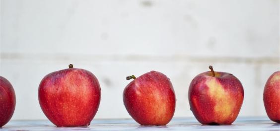 apples 564x264